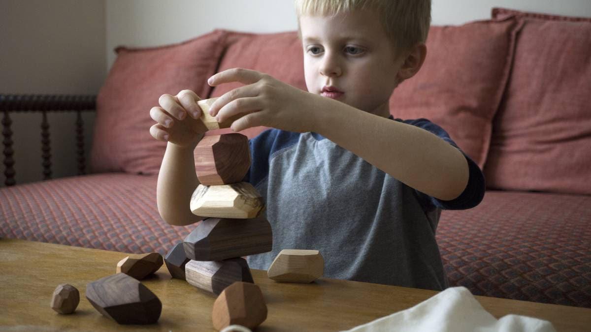 22 piece Tumi Ishi set wooden blocks Wood Stones Baby image 4
