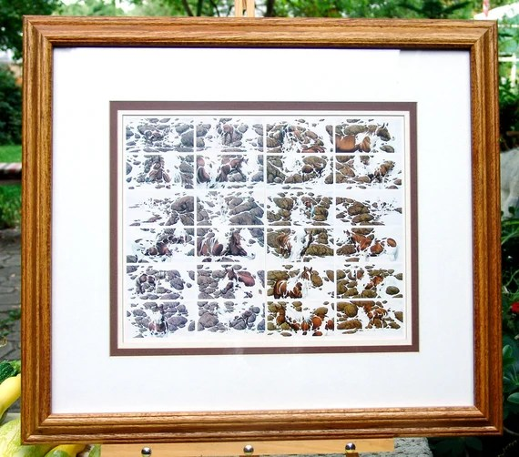 Hide And Seek Framed Print Bev Doolittle Gift For Teenage Girl Lodge Decor Horse Print Western Horse Art