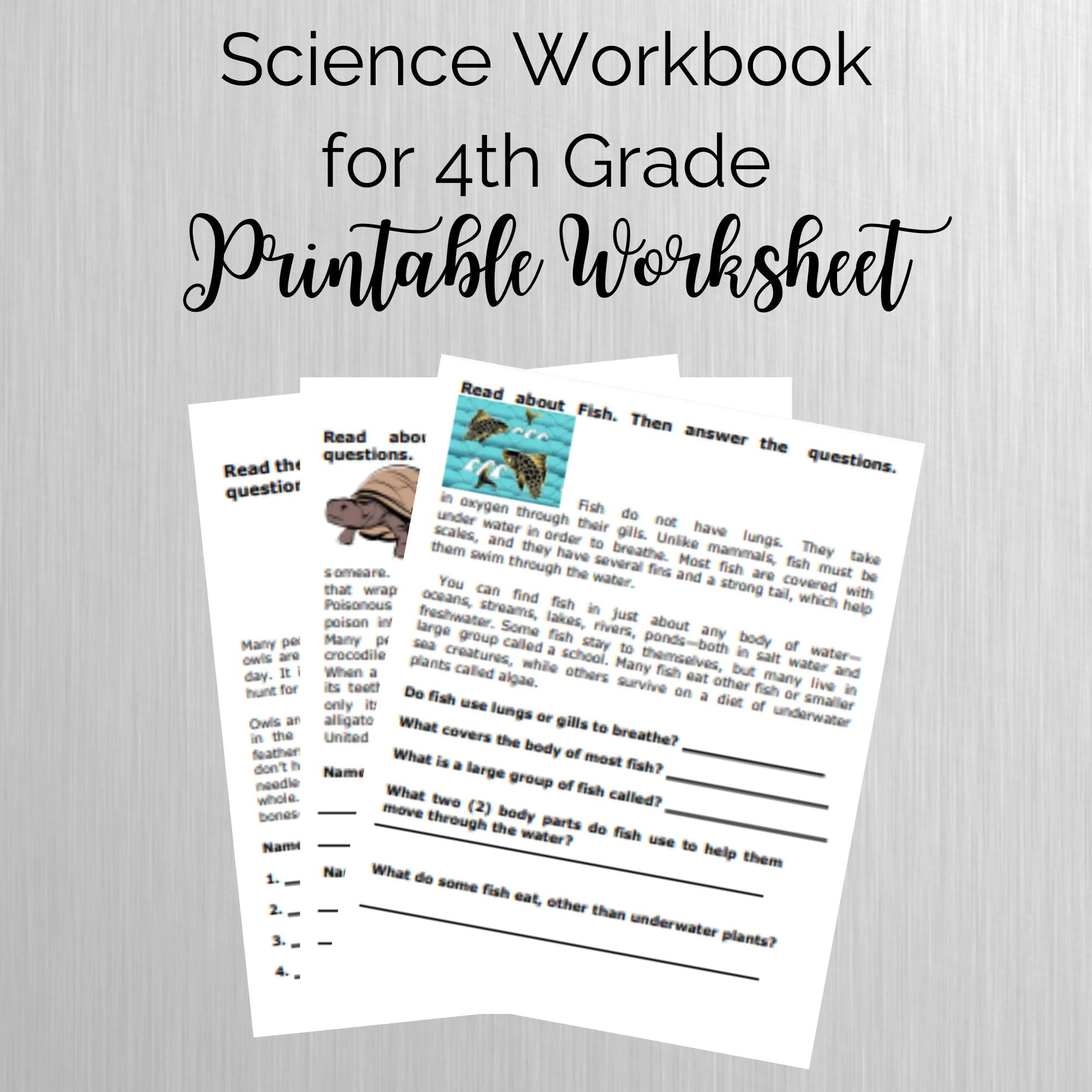 Science Workbook For 4th Grade Printable Exercise
