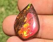 Ammolite the gemstone of ...