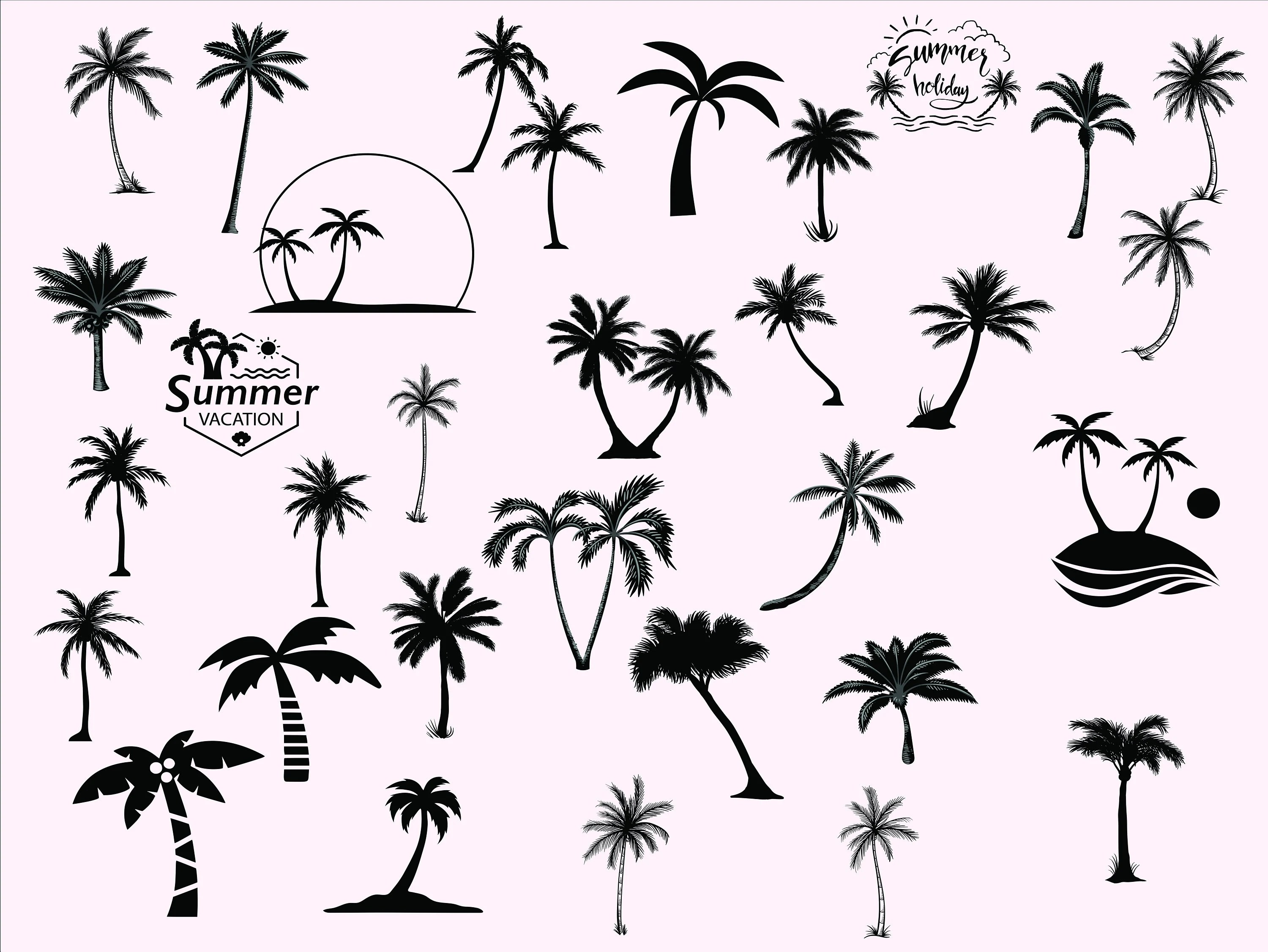 Palm Tree Coconut Tree Svg Clipart Silhouette Palm