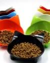 Colorful Dog Bowl Etsy