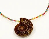 Rainbow Ammonite Fossil Choker Necklace | Handmade | Minimalist Style | Petrified Crustacean | Glass Seed Beads | Gifts for Her | Women
