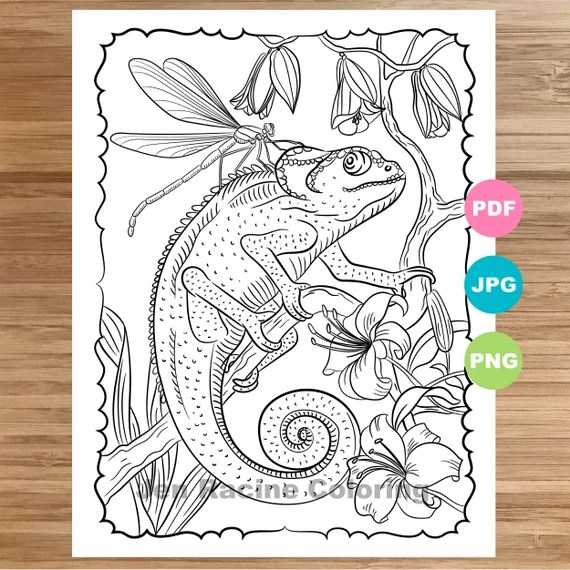 Chameleon Coloring Page Animal Art Coloring Book Printable Etsy