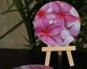 Plumeria Coasters, Floral Coasters, Table Coasters,  Tile Sandstone, Stone Coasters,  Sandstone Coasters, Pink Plumeria Coaster Set