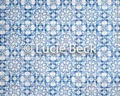 Portugese blue backdrop, ML836, digital backdrop, colourful backdrop, Portuguese tiles backdrop, backdrop food photography, myluciebackdrops