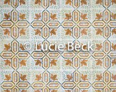 Portugese orange backdrop, ML837, digital backdrop, colourful backdrop, Portuguese tiles, backdrop foodphotography, myluciebackdrops