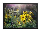 Framed Poster - Sunrise Wildflowers