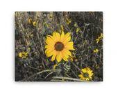 """Canvas - Yellow """"Daisy"""""""