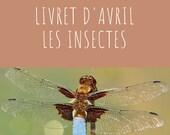 Livret d'activité d'avril - Les insectes