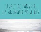 Livret d'activité de janvier - thème les animaux polaires