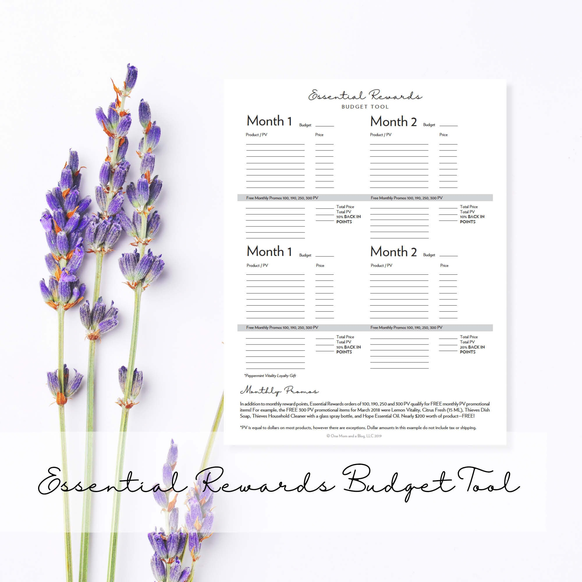 Essential Rewards Budget Worksheet Monthly Planner