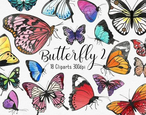 Watercolor Butterfly Clipart Set 2 Digital Collage Etsy