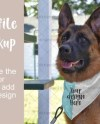 Dog Bandana Mock Up Etsy