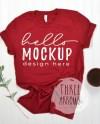 Bella Canvas 3001 Mockup Cardinal Tshirt Flat Lay Mockup Red Etsy