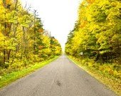 Road Through Yellow Fall Colored Forest