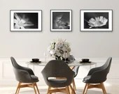 schwarz weiß Fotografie, Set von 3 Drucken, Druck Blumen schwarz weiß, Fotografie Natur, minimalistische Prints, Natur Foto, Wanddeko