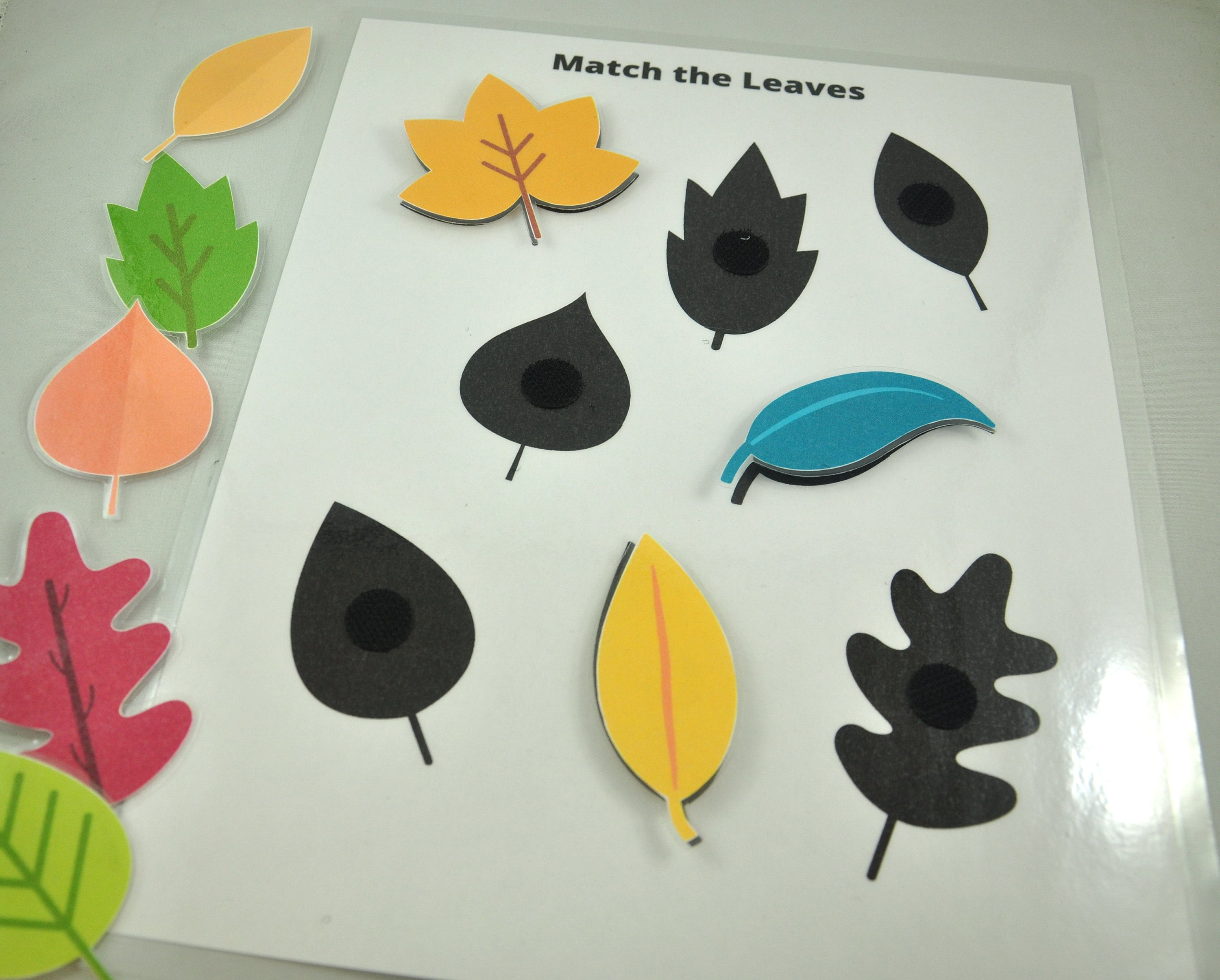 Match The Leaves Worksheet Leaves Matching Game