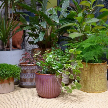 Striped glazed ceramic plant pots 2 colours image 0
