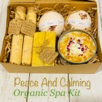 Organic Spa Kit Bath Spa Gift Set Organic Bath Salts Handmade Soy Candle Handmade Cp Soap Bath Bombs Essential Oils Infused Valentines