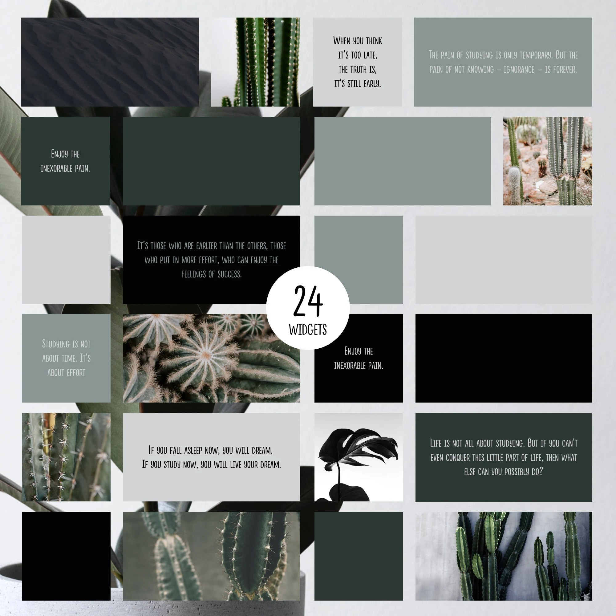 We've rounded up a gallery of some of our favorite (and free) app icon looks. IOS14 APP ICONS Pack green cactus succulent neutral ...
