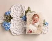 Blue Hydrangeas Newborn Digital Backdrops (2)