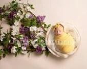 Fresh Lilac rustic Newborn Digital Backdrops (2)