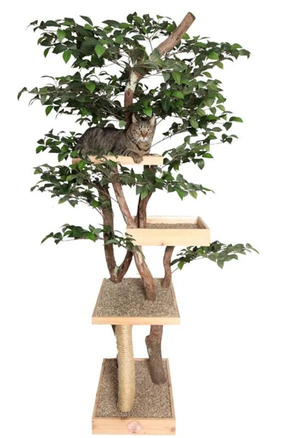 Sycamore Cat Pet Tree House Etsy
