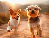 Custom Pet Memorial Painting Digitally Mastered,Pet Memorial,Pet Painting from Photo,Pet Photo Art,Pet Digital Painting