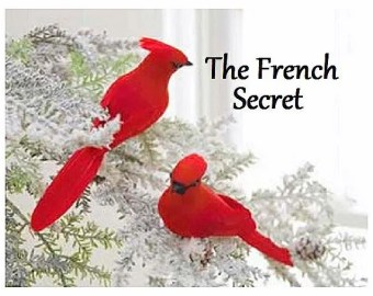 Christmas 6 Red Cardinal Bird Ornament Decoration Feather Tree Shabby Rustic French Country Wreath Centerpiece Artificial Craft