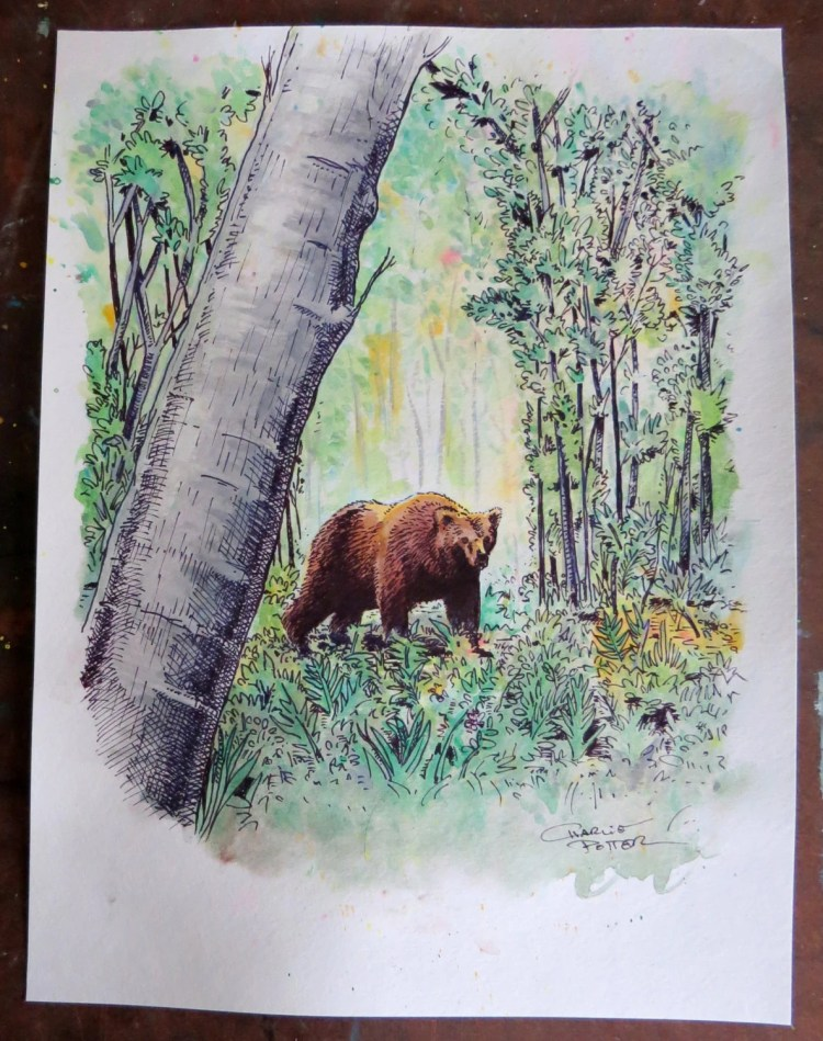 Walk in the Woods - Original watercolor and ink illustration