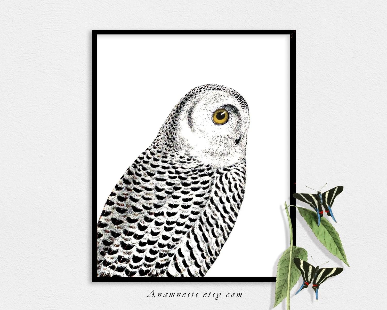 Snowy Owl Art Print Instant Download Printable Antique