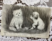 Antique 1910 Edwardian Black & White Vincent Colby Art Postcard Post Card 1900s Fluffy Kitten Cat Adorable Pug Puppy Dog Singing Friends