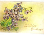 Antique Diamond Embossed Happy Birthday Greetings Postcard Purple Violets Flowers 1910