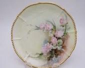 1900s Limoges France Elite Bawo Dotter Hand Painted Plate