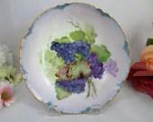 1890s Antique Vintage Hand Painted Habsburg China MZ Austria Artist Signed Fruit Bowl - Fabulous