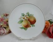 """1960s Hutschenreuther Fruit Salad Plate """"Apple"""" Charming"""