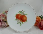 """1960s Hutschenreuther Fruit Salad Plate """"Peach"""" Lovely"""
