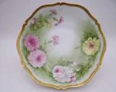 1920s Vintage PT Bavaria Tirschenreuth Hand Decorated Fruit or Serving Bowl