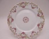 Set of 2 Vintage Factory Decorated Tressemannes and Vogt T & V Limoges France Pink Spray Salad or Lunch Plates 4290