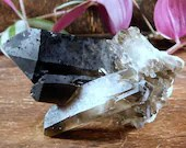 Smoky Quartz Crystal Cluster, Champagne Quartz Generator, Raw Smokey Quartz Crystal Point ~1711