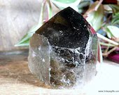 Black Smoky Quartz Tower, Raw Smoky Quartz, Crystal Tower ~1865