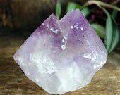 Raw Amethyst, Purple Twin Point Crystal Amethyst, Amethyst Crystal Cluster ~1920