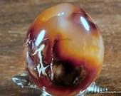 Agate Carnelian Egg ~1644...