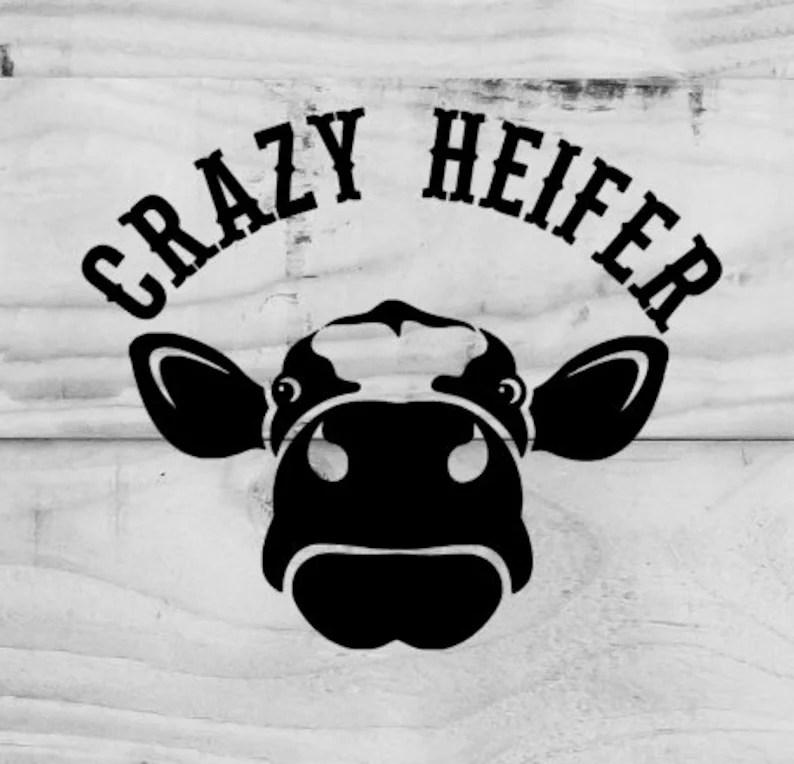 Download Crazy heifer Heifer svg cow svg files svg file for cricut ...
