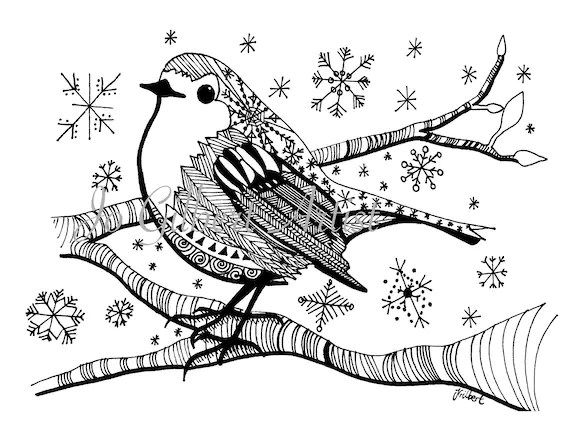 robin coloring page # 39