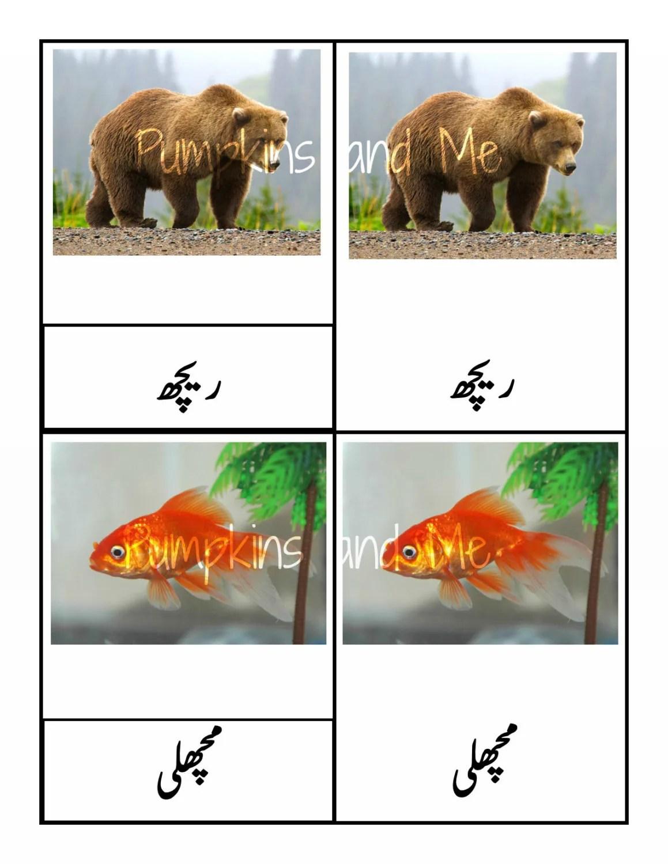 Urdu Language Learning Homeschooling Printables Urdu