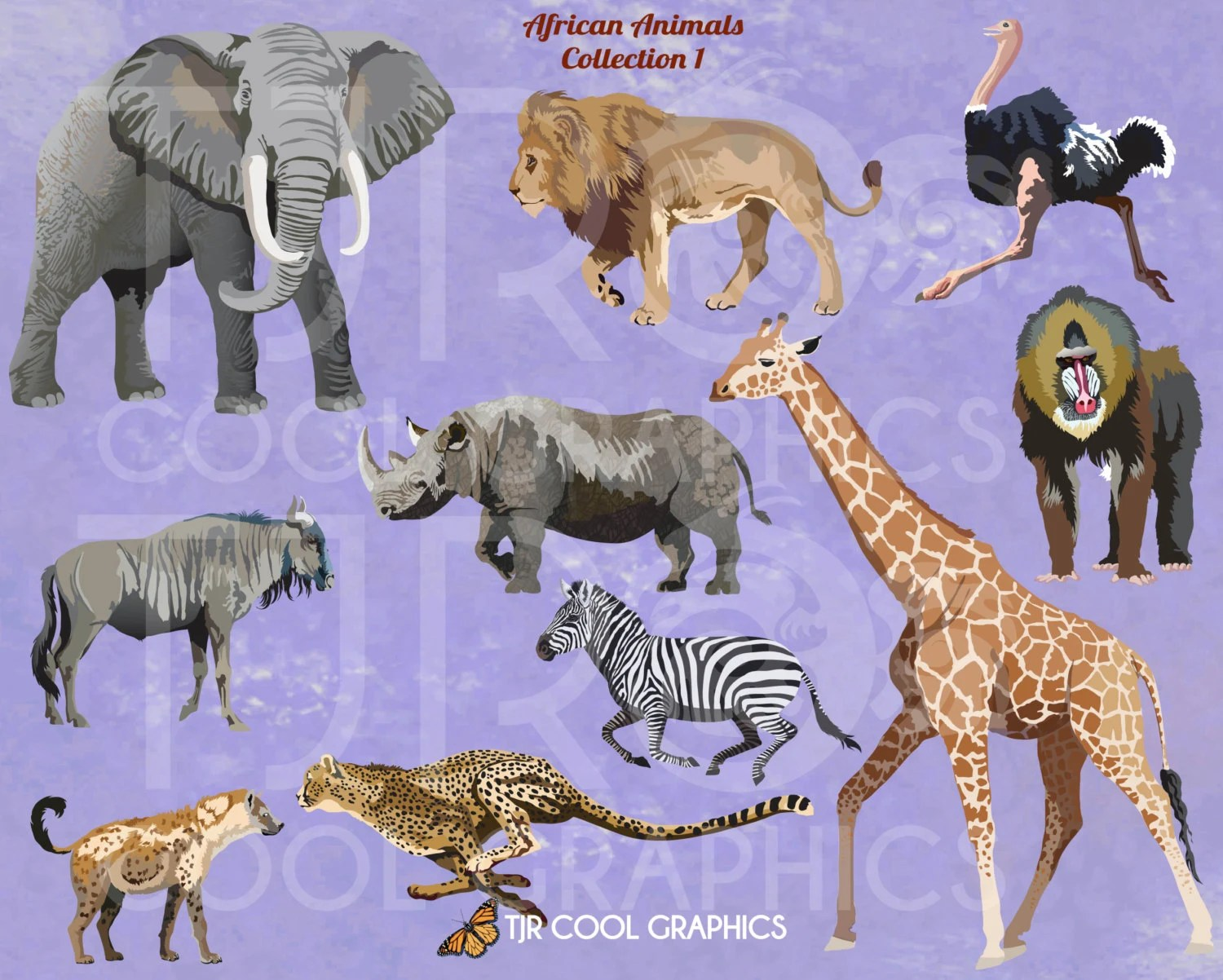 African Animals 1 Digital Realistic Clip Art Printable
