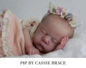 CuStOm Pip by Cassie Brace (17 Inches + Full Limbs)