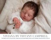 CuStOm Viviana By Tiffany Campbell (20 Inches + Full Limbs)